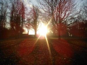 Morning sun, Rookery Park, Erdington